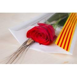 Rosa Vermella 60 cm Muntada