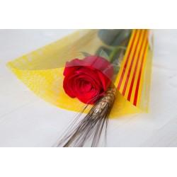 Rosa Vermella 70 cm Muntada