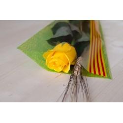 Rosa Groga 60 cm - Des de 1.35€