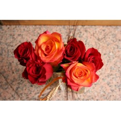Rosa High Magic 60 cm - Pack 25 unitats - Des de 1.35€